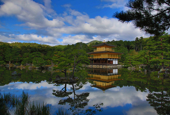 NE7A1377 Kinkaku-ji full res web ready